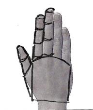 basic shape2